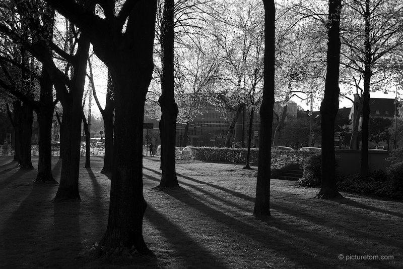 Abend am Aachener Weiher